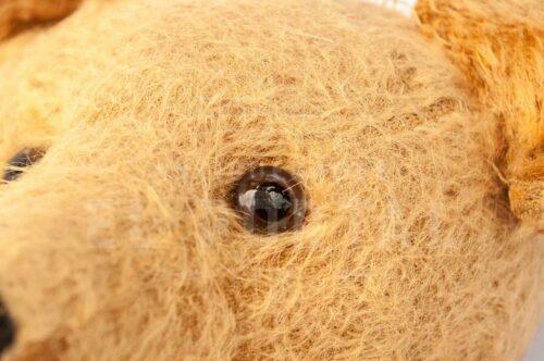 Steiff Oso Teddy | 6