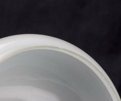 Pantalla de cristal modelo campana | 1