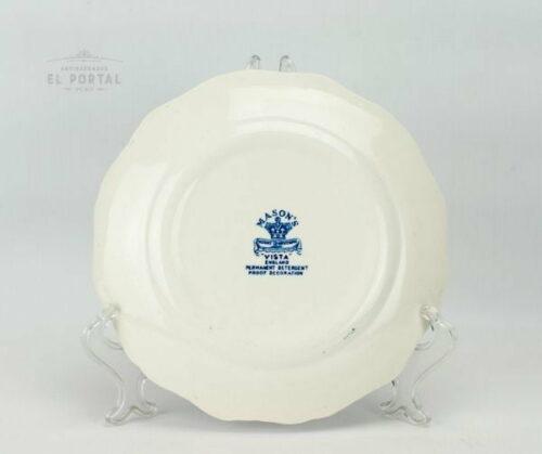 Plato Azul y blanco  Masons VISTA Circa 1950 | 3